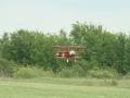 warbird2006_301.jpg