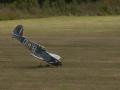 modelfly-316-1 [800x600].jpg